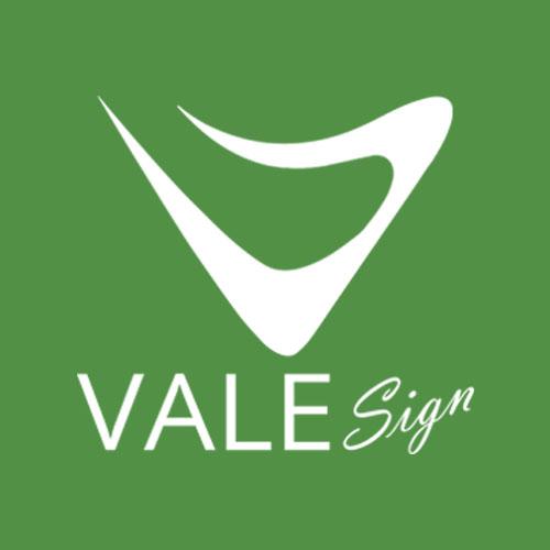 valesgin-logo